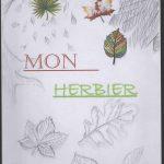 Herbier collège SVT 6ème (17)