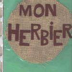 Herbier collège SVT 6ème (6)