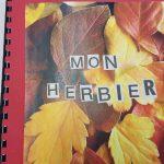 Herbier collégiens (17)