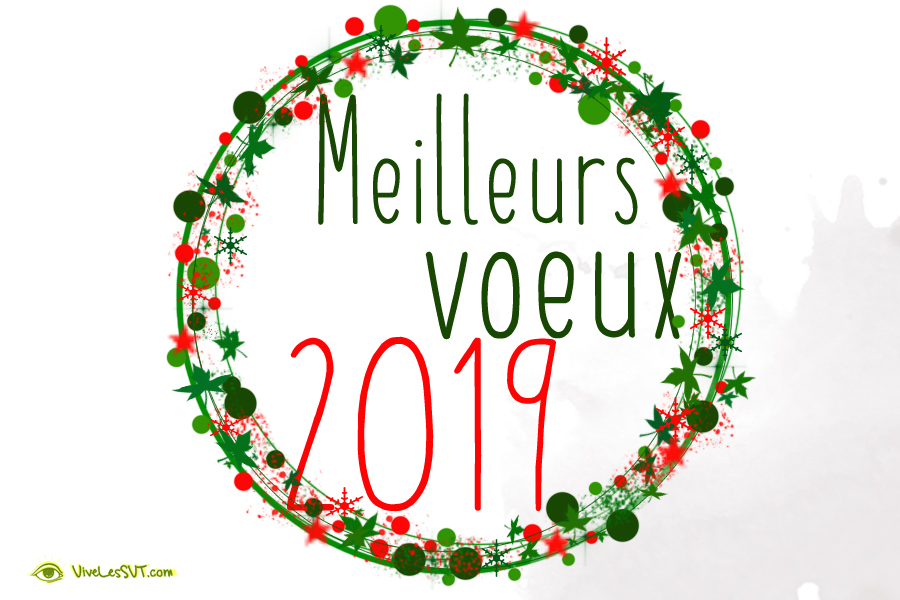 voeux 2019 2