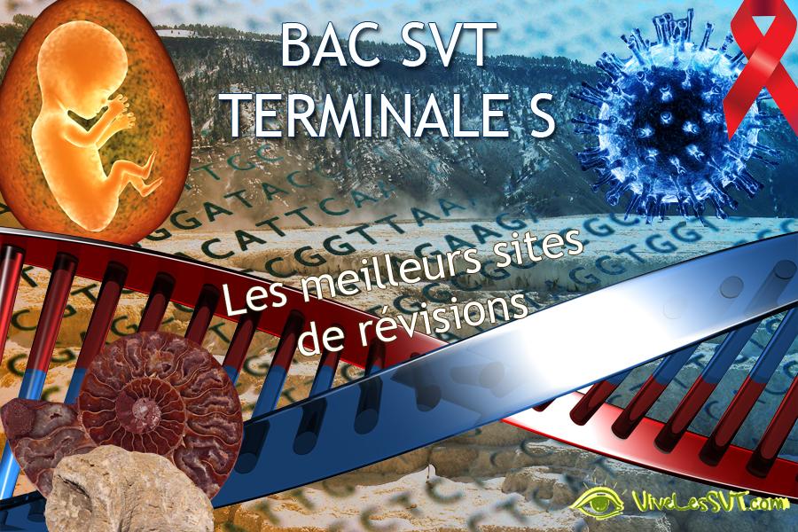 Le programme de la terminale S