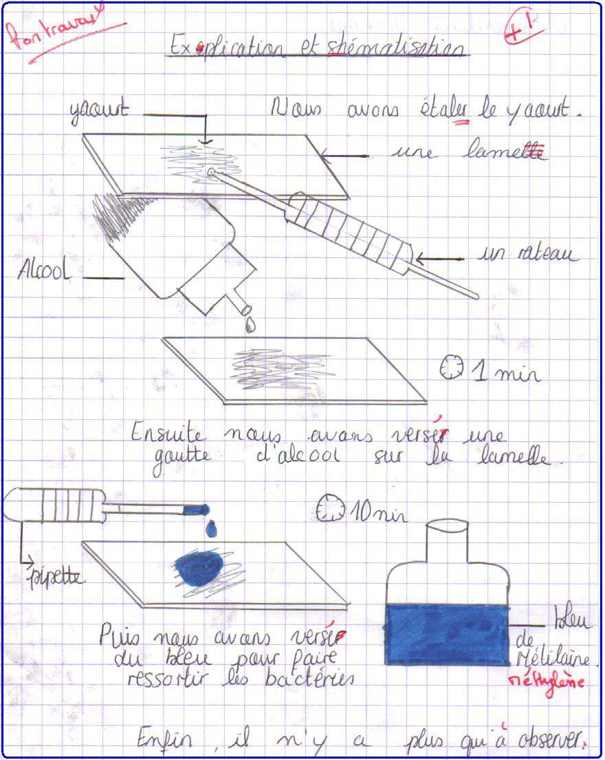 protocole1