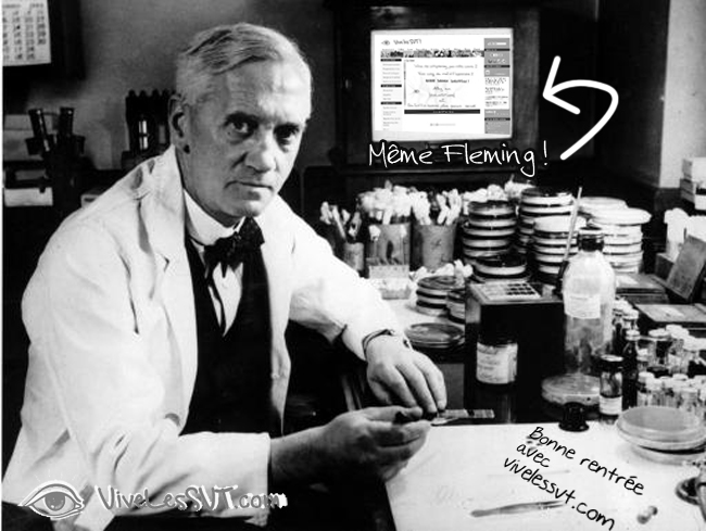 Alexander Fleming Antibiotique SVT 1928