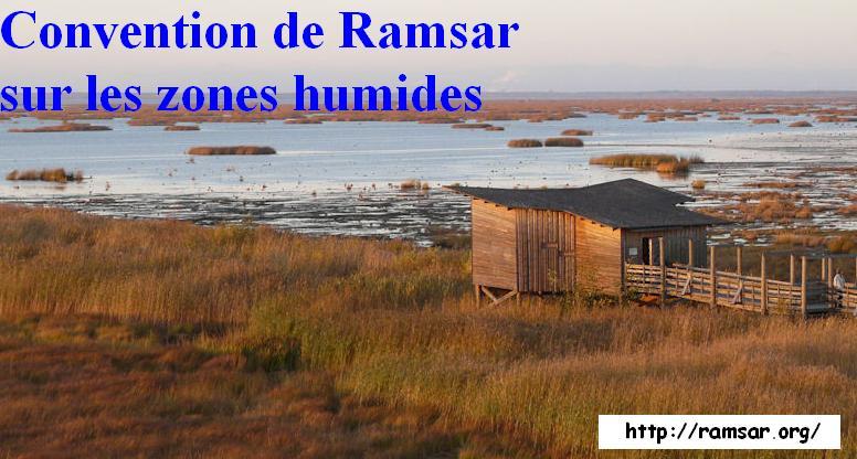 2 février : journée mondiale des zones humides