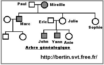Exercices De Genetique Mendelienne Pdf