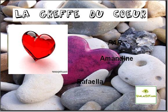 greffe-du-coeur