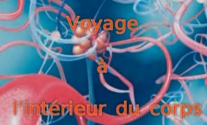 voyagecorps