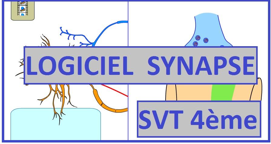 logiciel-synapse-svt-4eme1