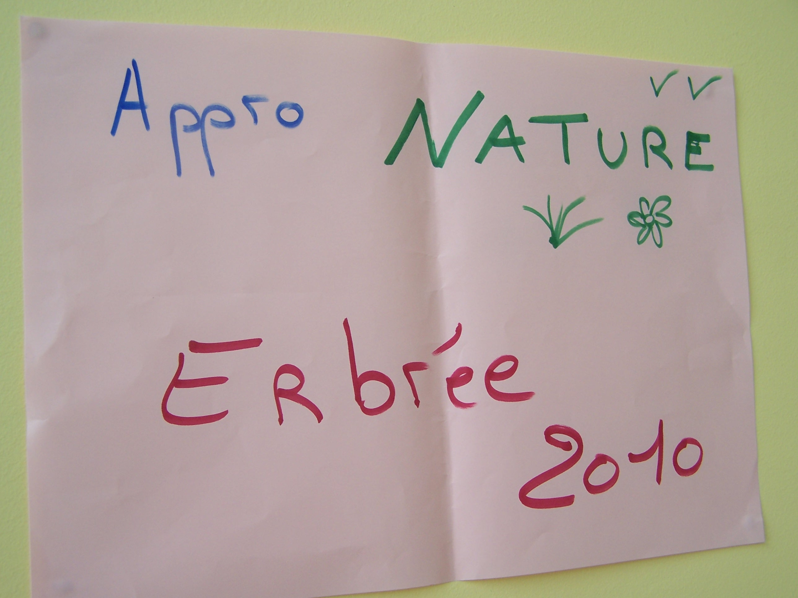 Stage BAFA Nature et Environnement
