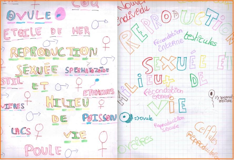 reproduction-sexuee-et-milieu-de-vie-svt-4eme-3