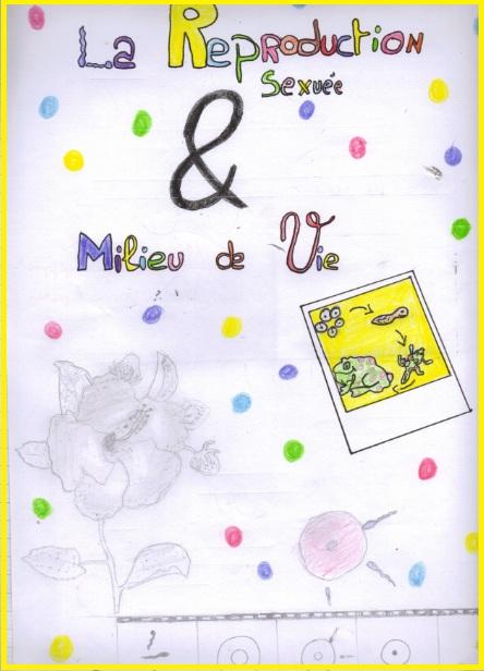 reproduction-sexuee-et-milieu-de-vie-svt-4eme