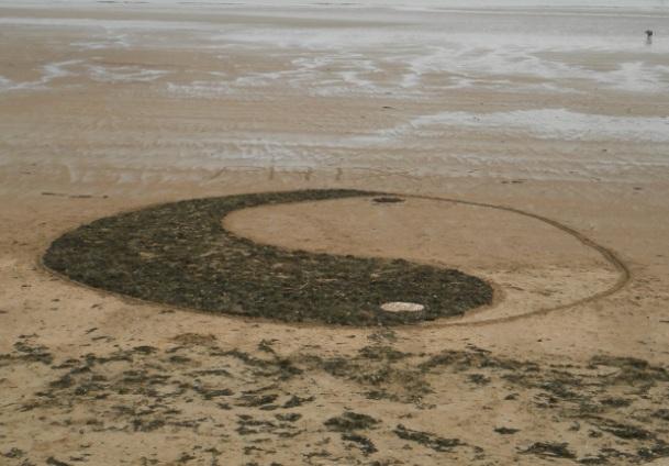 Stage BAFA : Land Art au bord de mer