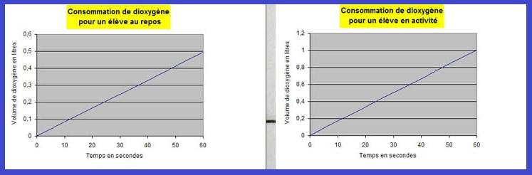 graphique consommation dioxygène SVT 5ème
