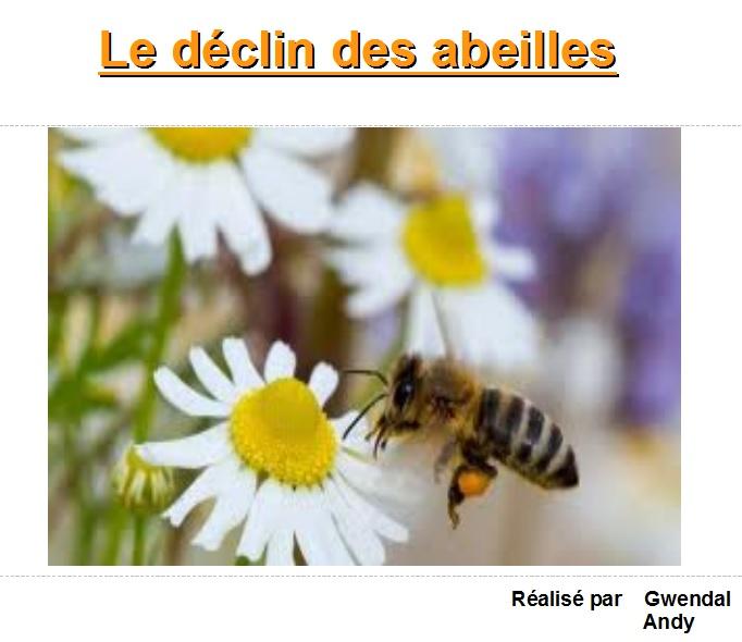 déclin des abeilles