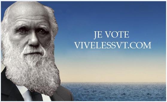 Qui vote VivelesSVT.com ?