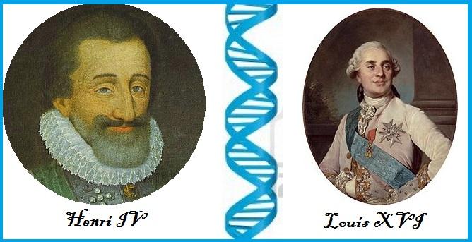 L'ADN d'Henri IV coïncide avec celui de Louis XVI