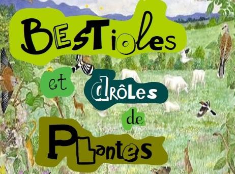 Bestioles et drôles de plantes près de chez vous