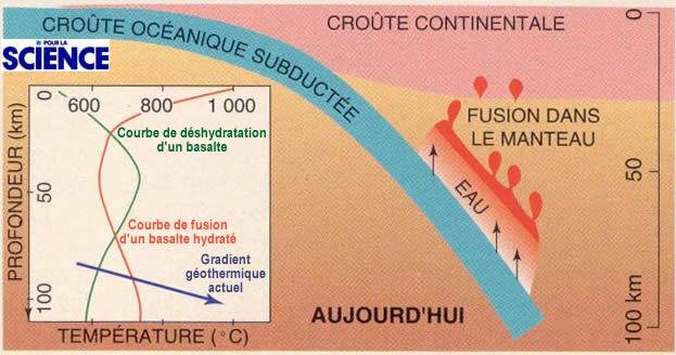 Le magmatisme en zone de subduction