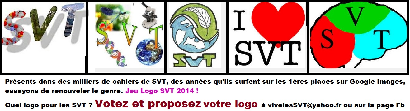 Jeu logo SVT 2014