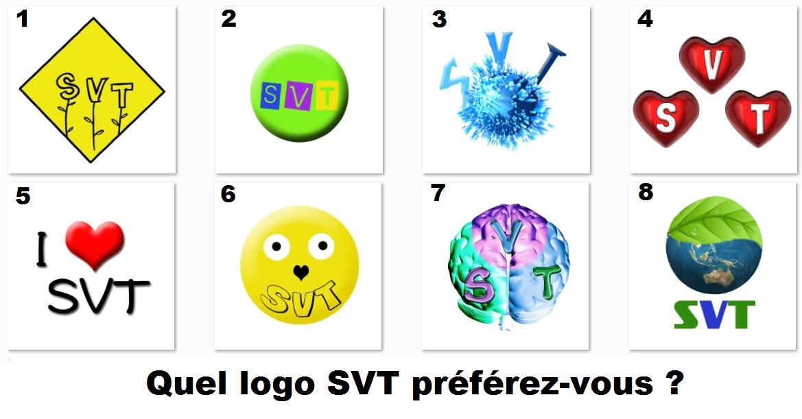 jeu logo SVT