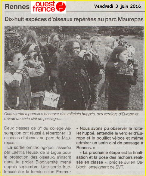 Collège Lycée Assomption Rennes Julien Cabioch LPO SVT 6ème oiseaux