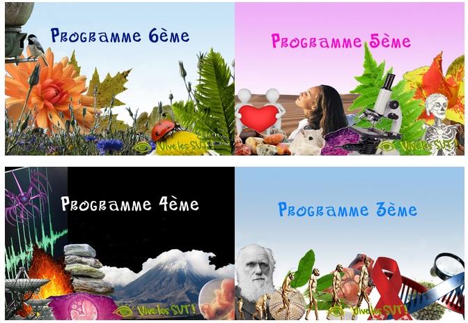 programmes SVT