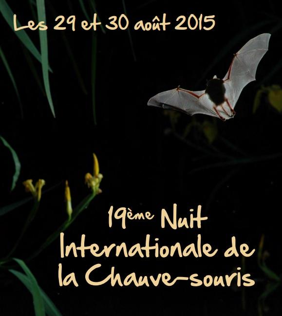 nuit internationale chauve souris affiche