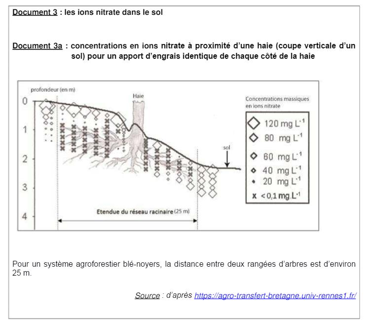 Sujet Bac Sciences ES L métropole 2016 (6)