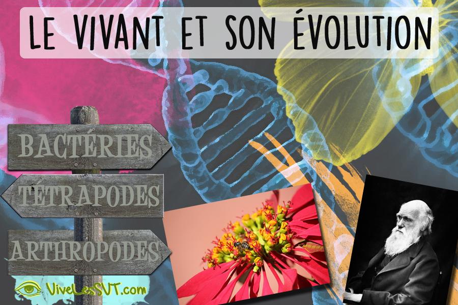 Le vivant et son évolution programme de SVT 5ème 4ème 3ème cycle 4
