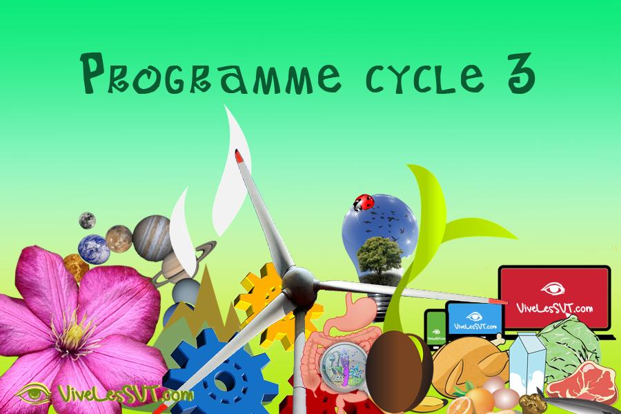 Programme sciences et technologie cycle 3 école collège