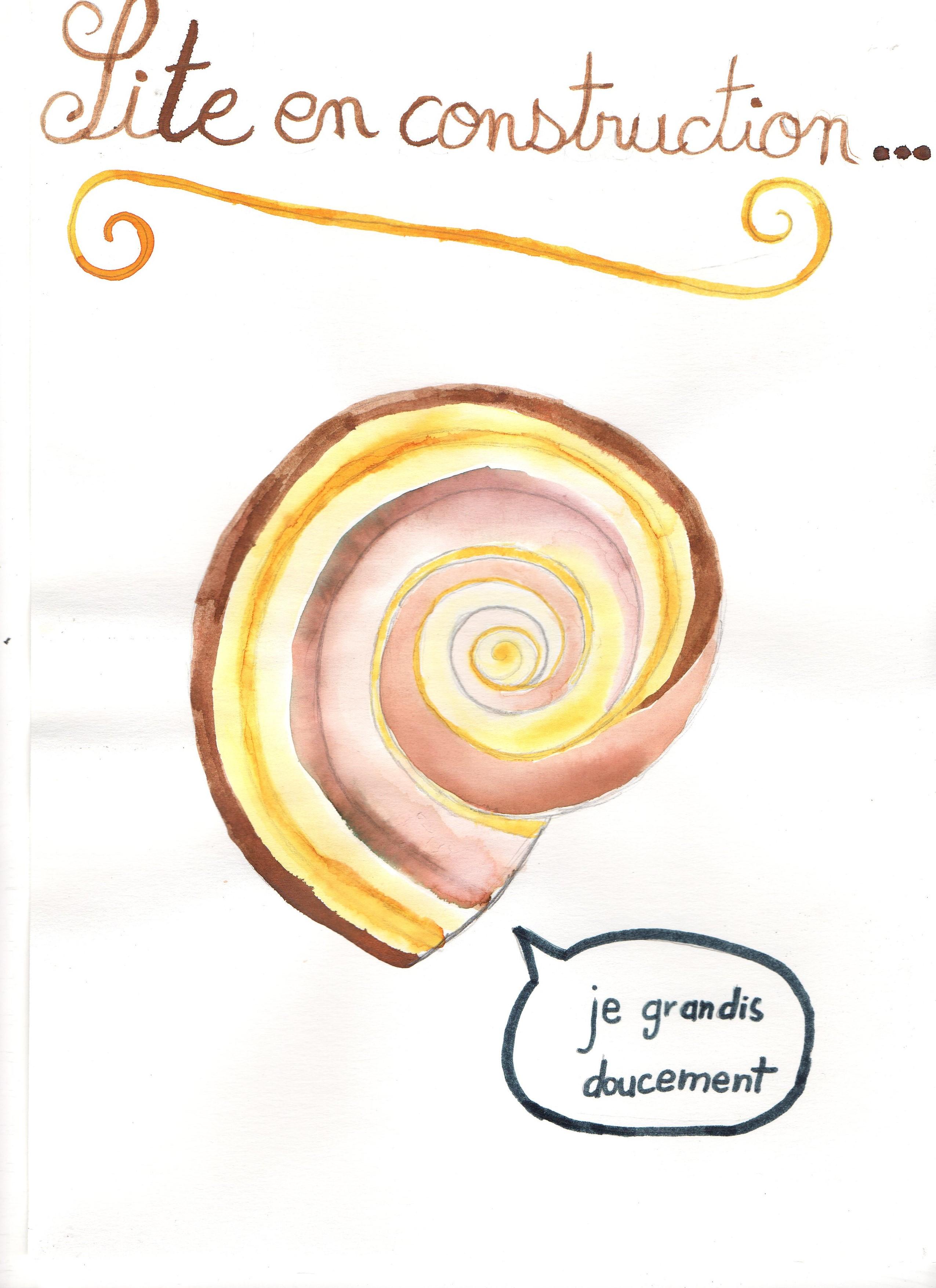 un an de SVT collège Assomption Rennes classe de 5ème (16)