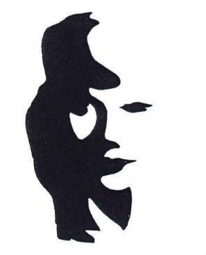 Illusion d'optique 1ère S SVT (1)