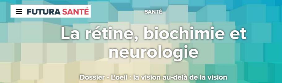 dossier-retine-oeil-vision-svt-futur-science