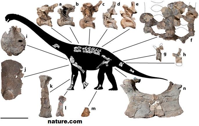nature-dinosaure