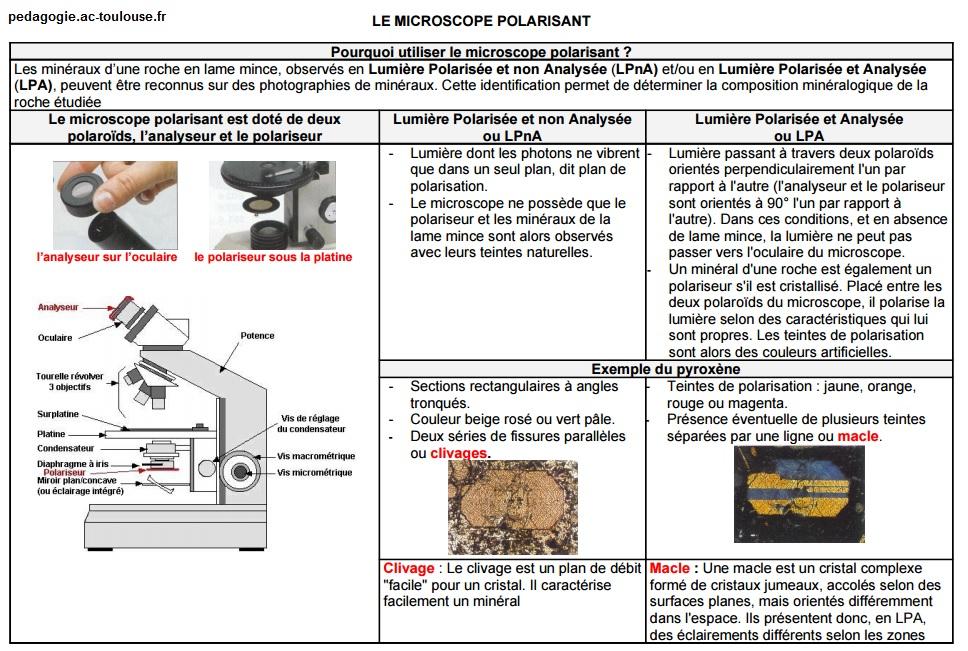 fiche-microscope-polarisant-svt