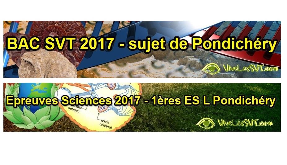 Sujet Sciences 1ères ES / L 2017 – épreuve anticipée Pondichéry