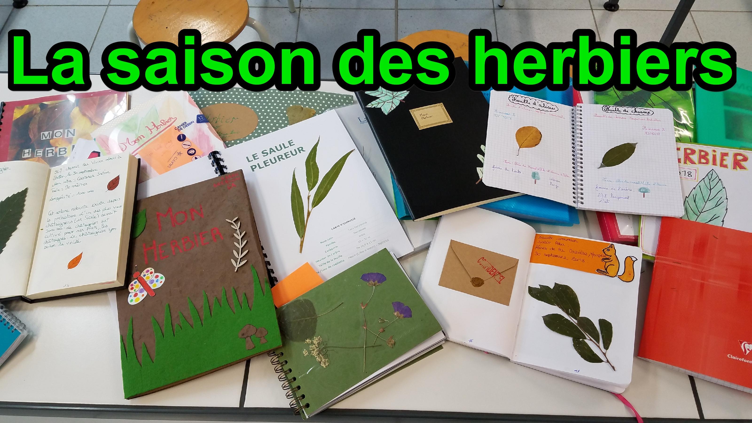 saison des herbiers