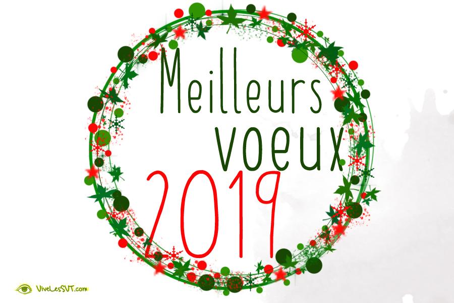 voeux 2019 2
