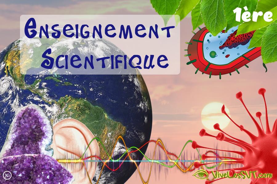 Sujets zéro en enseignement scientifique – 1ère
