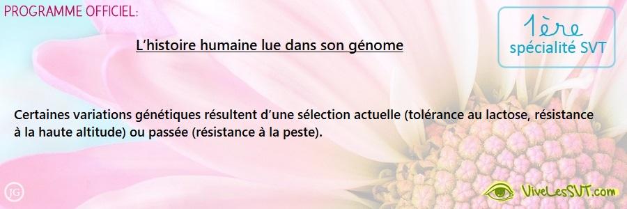L'histoire humaine lue dans son génome