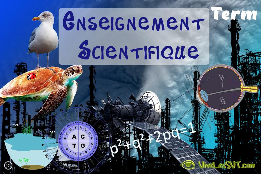 Enseignement scientifique en terminale