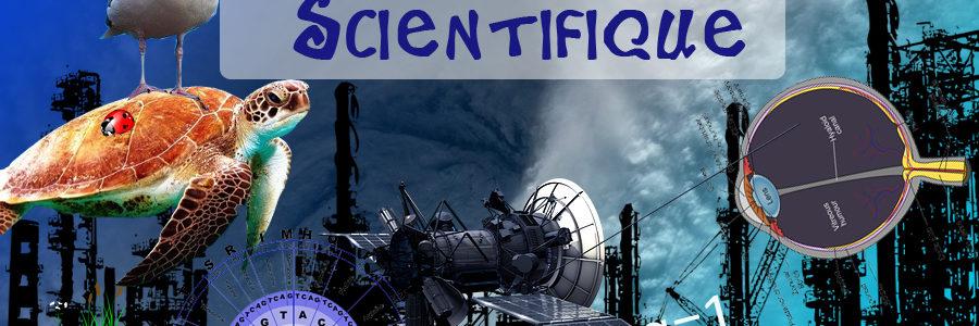 Banque de sujets – Enseignement scientifique Terminale – Sujets en ligne